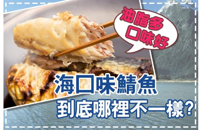 【海口味課堂】海口味挪威薄鹽鯖魚,到底哪裡不一樣?