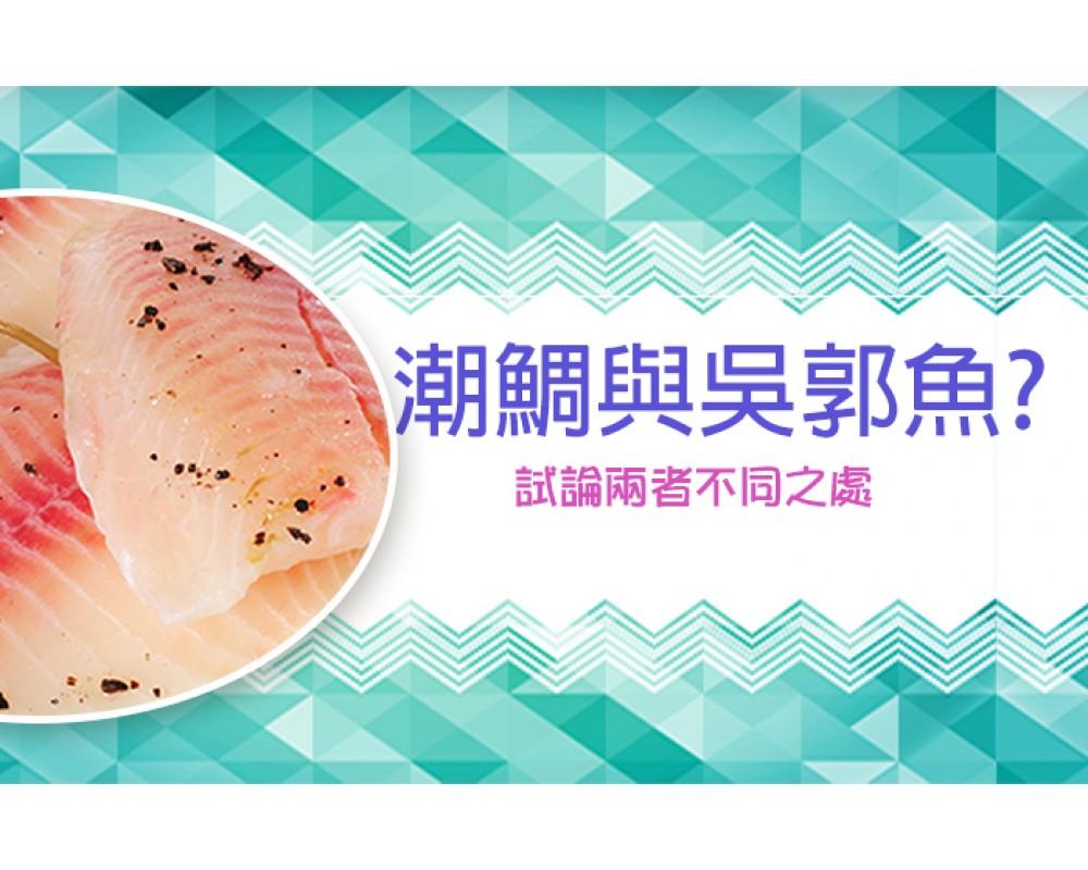 【海口味課堂】潮鯛就是吳郭魚?兩者的不同與潮鯛的養殖